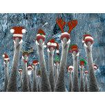 Merry Cranes Among Us II.png