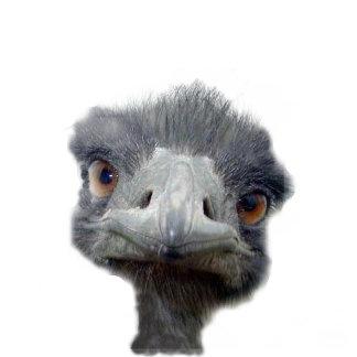 Ostrich 103 items