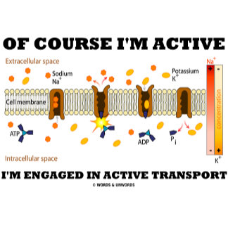 Of Course I'm Active Engaged In Active Transport