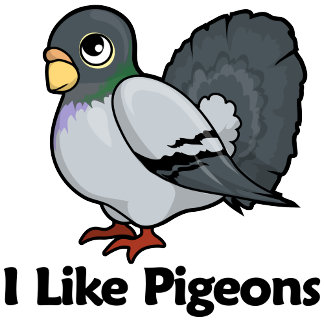 I Like Pigeons
