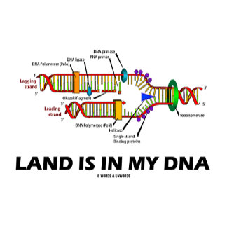 Land Is In My DNA (DNA Replication)