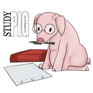 Studypig