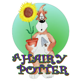 A HAIRY POTTER