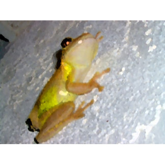 tree frog on wall watercolor style