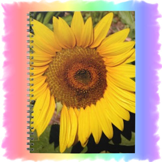 Greeting Cards & Note Cards
