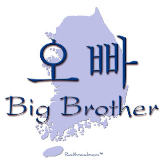 Big Brother Little Brother (Korean)
