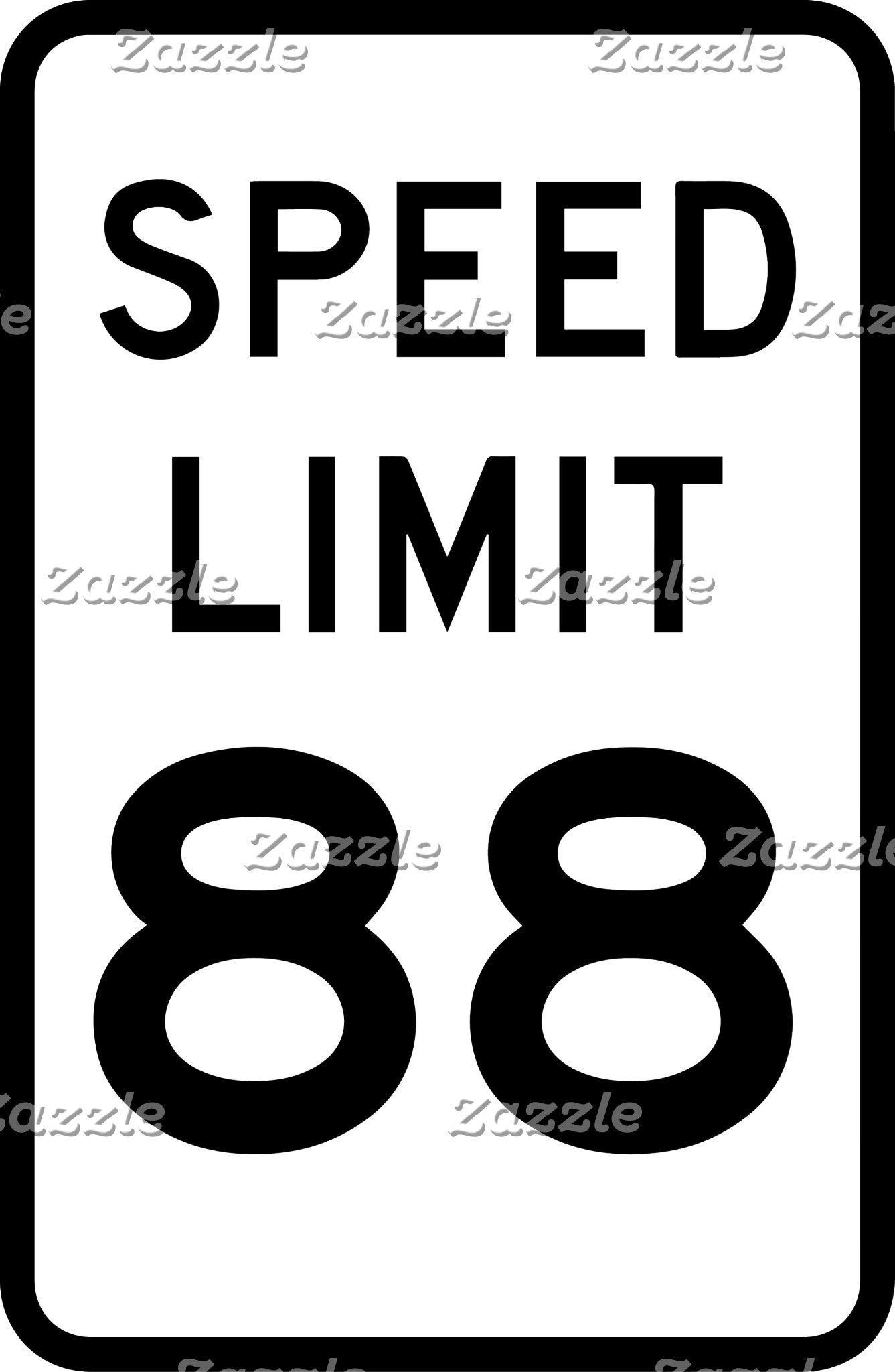 Speed Limit 88 #BTTF