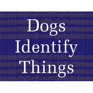 DOGS Identify Things