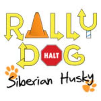 Siberian Husky Rally Dog