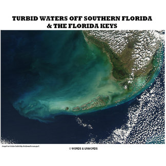 Turbid Waters Off Southern Florida & Florida Keys