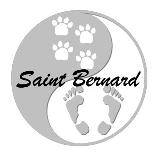 Yin yang Saint Bernard