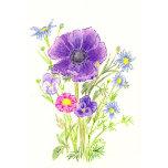 Anemone bouquet.jpg