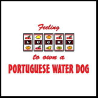Feeling Lucky to Own a Portuguese Water Dog