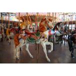 carousel horse rb.JPG