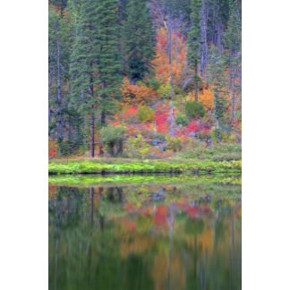 Autumn colors of forests in The Cascade 2