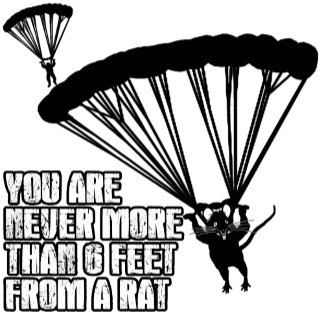 Funny rat T shirts or funny skydiving T shirts