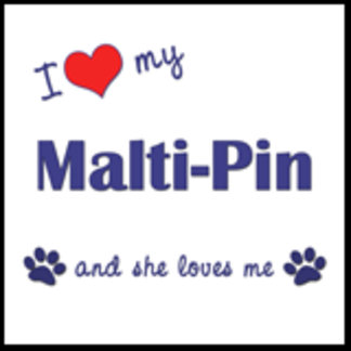 I Love My Malti-Pin (Female Dog)