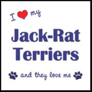 I Love My Jack-Rat Terriers (Multiple Dogs)