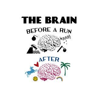 Runners Brain