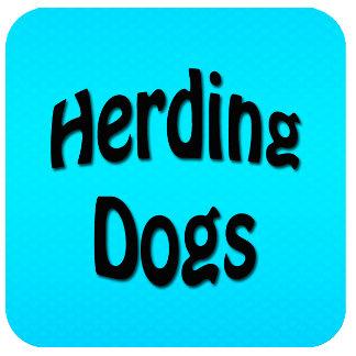 HERDING GROUP
