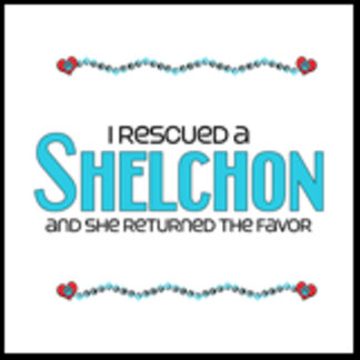 I Rescued a Shelchon (Female Dog)