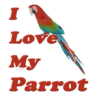 I Love My Parrot