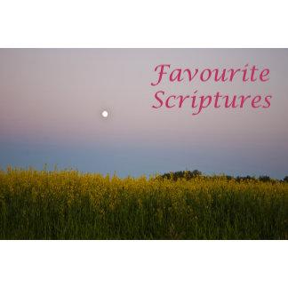 Favourite Scriptures