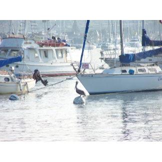 Sailing, Clipper Ships, Kayaking
