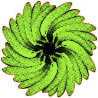 ➢ Green Banana Flower