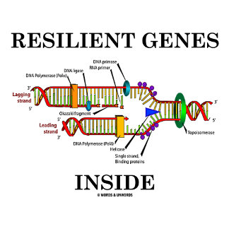 Resilient Genes Inside (DNA Replication)