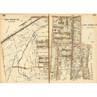 134135 New Rochelle