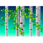Birchtrees.zazzle.png