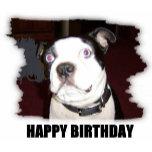 happy birthday snoop pic2