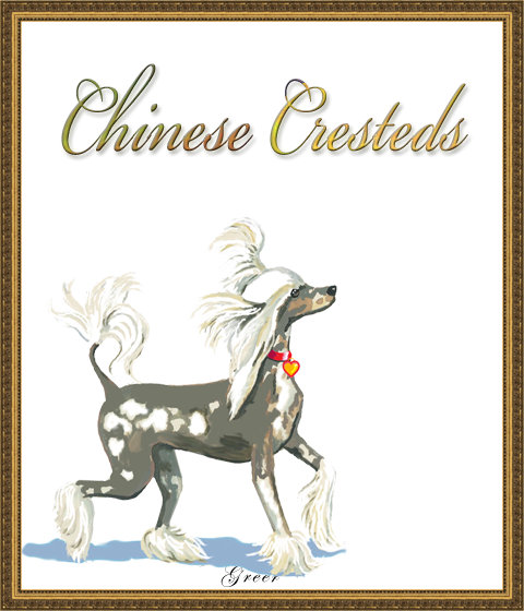 CHINESE CRESTED SHOP