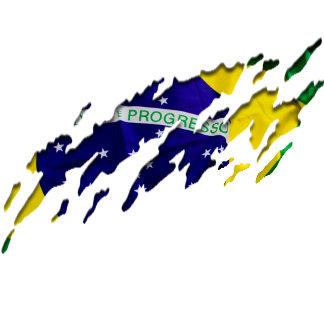 Brazilian Flag Designs