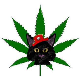 Pirate Weed Kitty