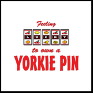 Feeling Lucky to Own a Yorkie Pin