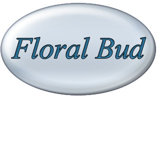 Floral Bud Fade