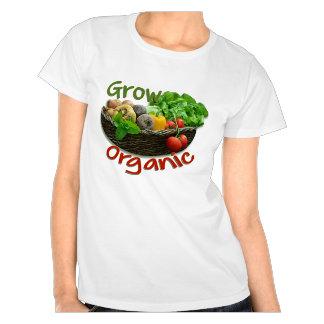 Fruit, Vegetables and gardening