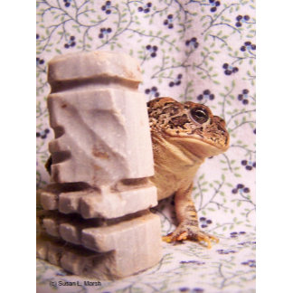 Toad frog marble chess piece photograph design