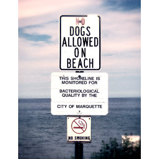 No Dogs Allowed On Beach