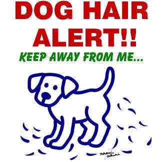 DOG HAIR ALERT -- Labrador