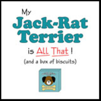 My Jack-Rat Terrier is All That!