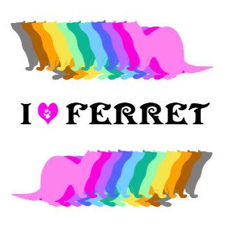 Colorful ferret (3)