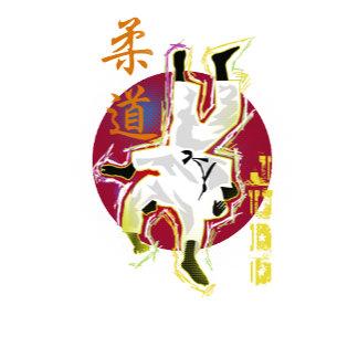 Judo and Aikido