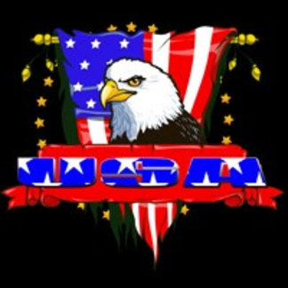 Eagle Side View USA Banner