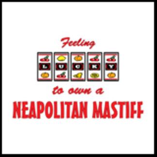 Feeling Lucky to Own a Neapolitan Mastiff