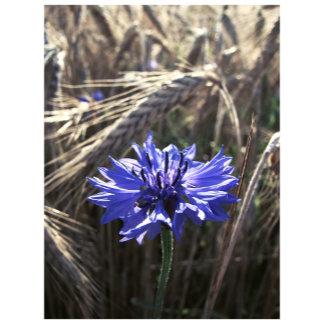 Blue Flower in Grain
