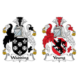 Wadding - Young