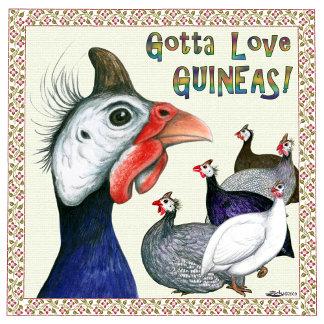 Turkeys and Guinea Fowl